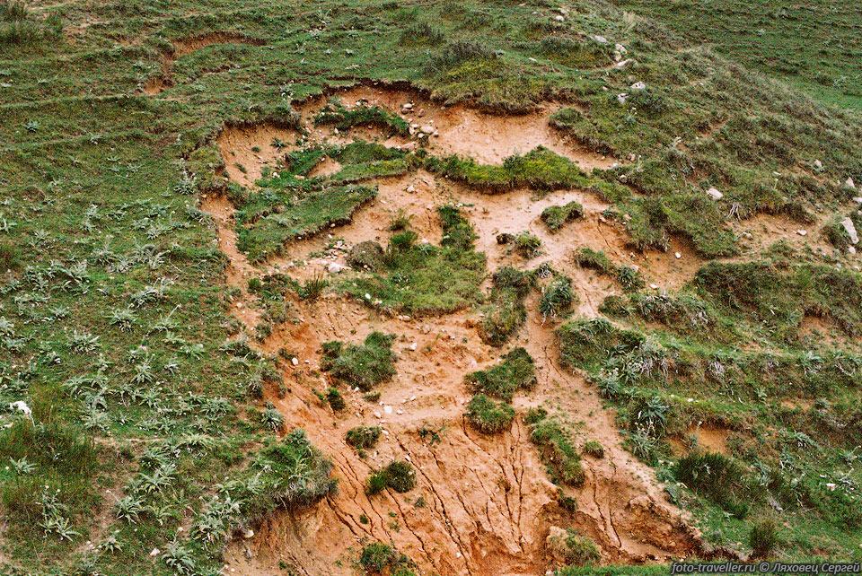 Проблема эрозии почв и основные методы борьбы с ней. курсовая работа 2,3 M,
