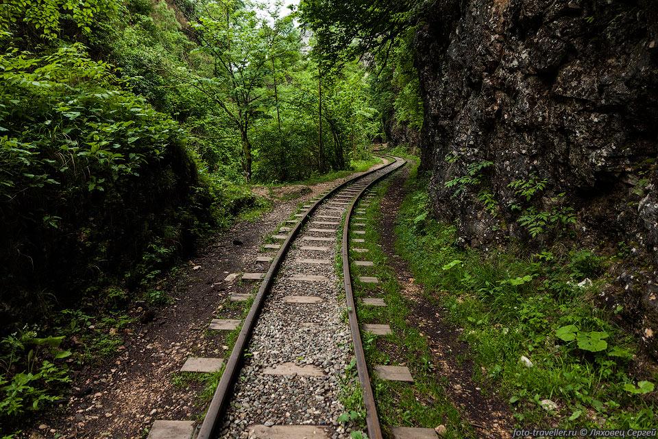 В Гуамском ущелье в 1930 годы проложена узкоколейная железная дорога предназначенная для транспортировки леса. Узкоколейка длиной 8 км связывала Гуамку с посёлком Мезмай. В 2011 году в верхней части Гуамского ущелья произошёл оползень, в результате чего участок дороги оказался под большим завалом. Завал можно пересечь пешком по тропе.