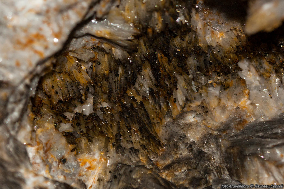 Кристаллы барита с флюоритом (медово-желтые) и кубиками пирита